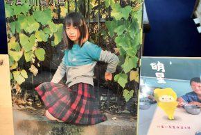 川島小鳥「BABY BABY」「明星」、「あらしのよるに」全巻セット、串田孫一のエッセイ、陶磁大系など入荷しています。