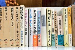 「ラテンアメリカの文学」シリーズは蔵印ありの為、魯山人著作集とフーコー「監獄の誕生」は書込多少の為、お手頃価格です