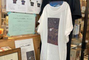 「ノロウェイの黒牛」Tシャツ予約受付中(2/27まで)